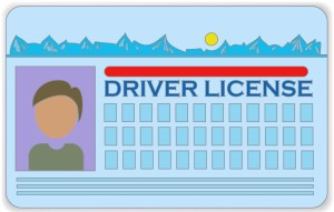 driver license prescott arizona az